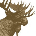 OfficialMooseIntlLogo